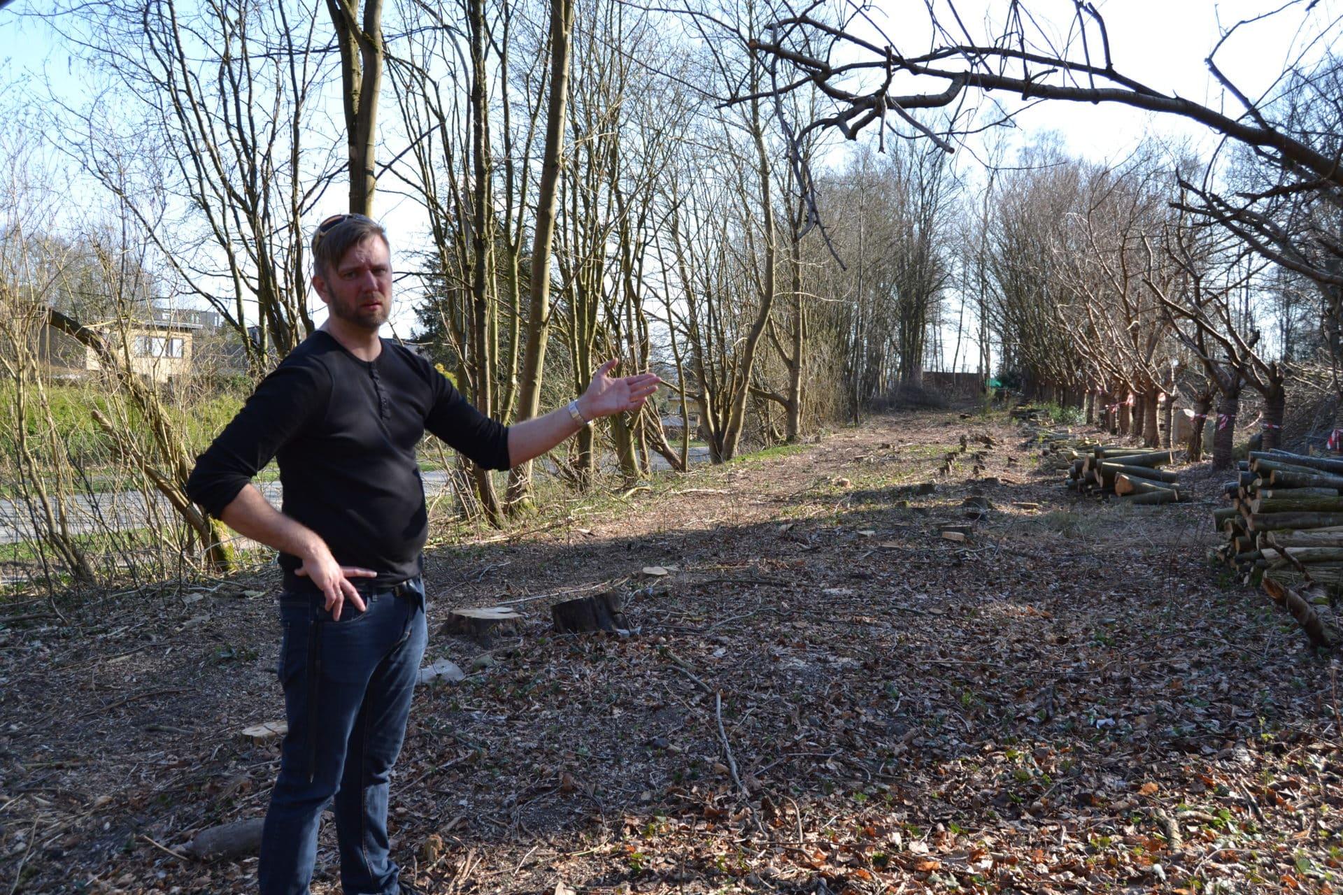 Nice Naboer: Træfældning på Stenbækgrund er ulovlig - Vores Brabrand ZC02