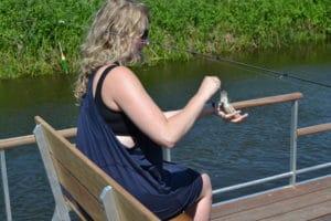Lettere for alle at hive fisk i land ved Søskovvej