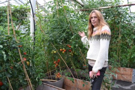 Fællesgartneriet i Årslev inviterede inden for i drivhusene