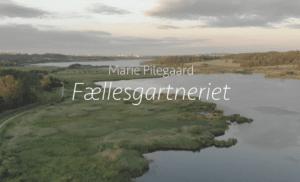 Livet i Ådalen: En video-fortælling om Fællesgartneriet