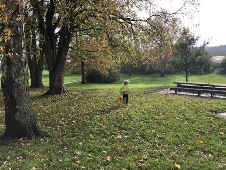 Brabrand i børnehøjde 5: Legepladsen i Søparken