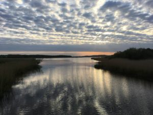 Brabrand Sø, engsøen og Skjoldhøjkilen blandt den fineste natur i Aarhus