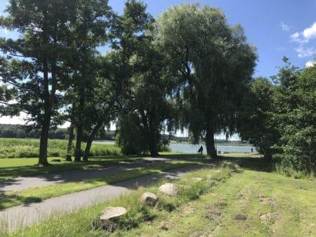 Venstre vil have lys på Brabrand-stien hele vejen rundt om søen