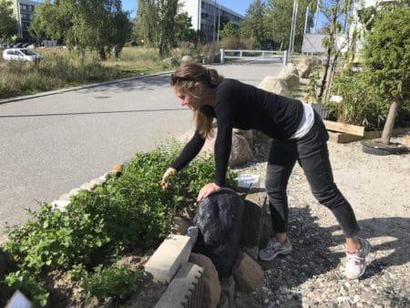 Kunstprojekt skaber hygge hos Sigrids Stue ved Nordgårdhallen