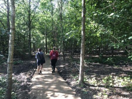 Bærsporet: Masser af oplevelser under træernes kroner