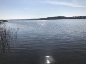 Small talk ved Brabrand Sø med to 5-årige fiskere