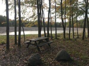 Gellerup Skov har i løbet af sommeren fået en ny sø