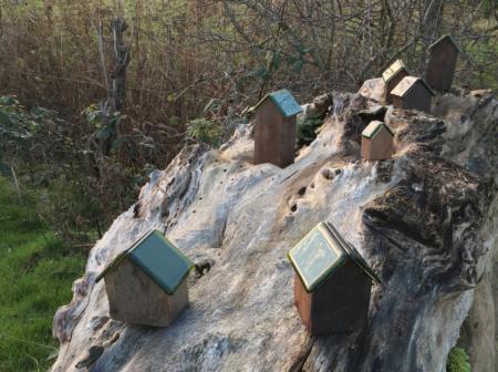 Grøn glaskunst poppede op på engen ved Brabrand Sø