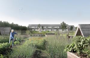 Aarslev Enge: Nyt boligområde skal erstatte nedslidte drivhuse