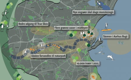 Grøn plan: Aarhus ådal kan blive 20 km lang naturpark